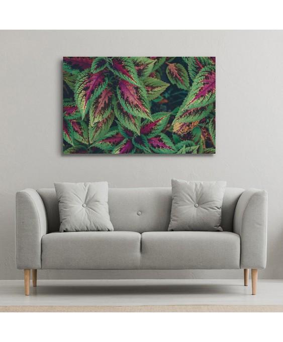 Floral - Cód. 5