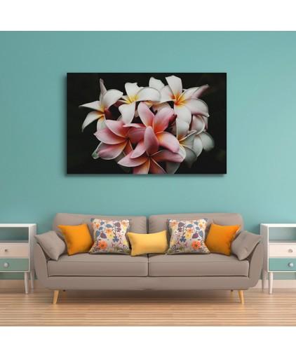 Floral - Cód. 13