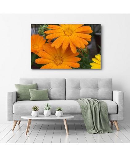 Floral - Cód. 25