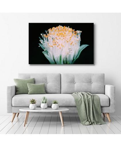 Floral - Cód. 26